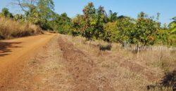 ที่ดินเกษตร ราคาถูก ดินดี เป็นดินดำโดยธรรมชาติ มีแหล่งน้ำ (แบ่งแปลงขาย) ที่ดินโฉนด 10-0-76 ไร่ 220,000 บาท / ไร่ ดินดี วิวสวย มีน้ำทำเกษตร ขายยกแปลง 2,000,000 บาท