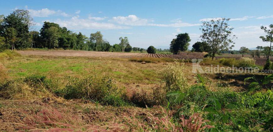ที่ดินราคาถูก ที่ดินเกษตร บรรยากาศดี ใกล้แหล่งชุมชน ติดถนน 2 ด้าน น้ำไม่ท่วม 10-1-18 ไร่