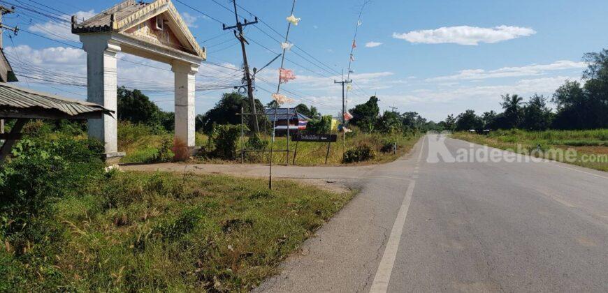ที่ดินราคาถูก ที่ดินเกษตร พอเพียง จัดสรร บรรยากาศดี ใกล้แหล่งชุมชน ติดถนน 4 ด้าน น้ำไม่ท่วม 29-2-13 ไร่