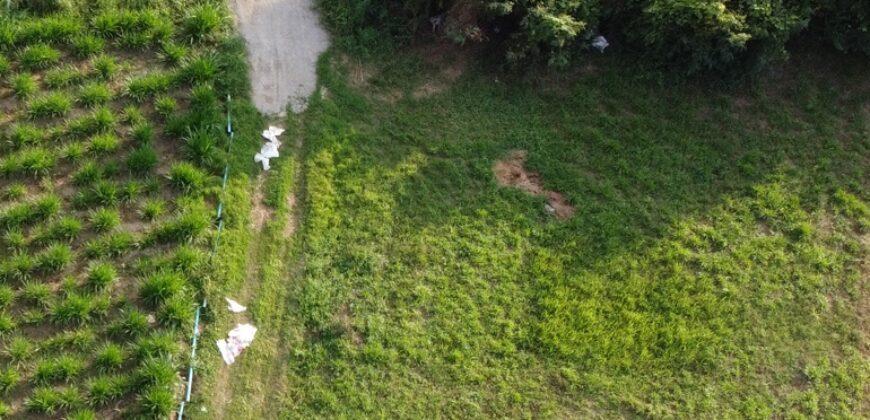 ขายที่ดินแปลงมุมติดถนน 2 ด้าน ชุมชนหมู่ 4 หนองอ้อ บ้านโป่ง ราชบุรี