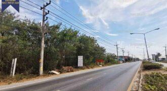 ที่ดินสีเขียว หน้าติดถนนใหญ่ ศาลายา นครปฐม เหมาะกับการลงทุน ที่ตั้ง : ตำบลคลองโยง อำเภอพุทธมณฑล จังหวัดนครปฐม