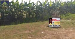 ที่ดินเปล่า สีเขียว ติดถนนใหญ่ สาย347 สามโคก ปทุมธานี ที่ตั้ง : ตำบลสามโคก อำเภอสามโคก ปทุมธานี