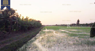 ที่ดิน 34 ไร่ คลองสามวา-มีนบุรี พื้นที่สีเขียว ที่ตั้ง : ถนนไมตรีจิตร แขวงสามวาตะวันออก เขตคลองสามวา กรุงเทพมหานครฯ