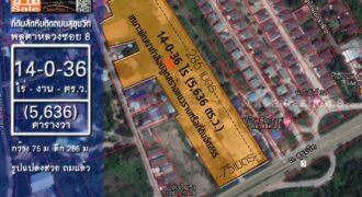 ขายที่ดินสัตหีบใกล้สนามบิน อู่ตะเภา ติดถนนสุขุมวิท 14 ไร่